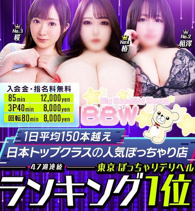 新大久保ぽっちゃり風俗 BBWテスト1